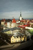 picture of olaf  - View of Estonia - JPG