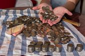 Two Womans Hands Holding Many Coins And Rows Of Stacked Coins Next To Many Coins Scattered On A Tab poster