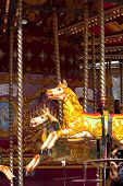 image of merry-go-round  - two carousel horses on a merry go round - JPG