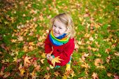 Little Girl Playing With Maple Leaf In Autumn poster