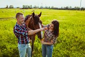picture of feeding horse  - young adult couple standing and feeding horse on field - JPG