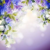 pic of lilac bush  - Lilac flowers background - JPG