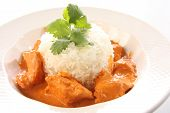 stock photo of paneer  - Indian butter chicken on rice studio isolated on white - JPG