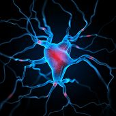 picture of neuron  - Neurons abstract background - JPG
