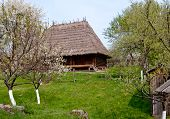 pic of household farm  - old wooden house - JPG