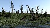 stock photo of dinosaurus  - mamenchisaurus on grass terrain  - JPG