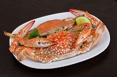 foto of cooked blue crab  - Boiled crabs with lime on the wood background - JPG