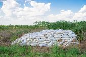 stock photo of fertilizer  - Bags of fertilizer placed in the land for farming gardening - JPG