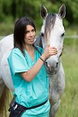 pic of great horse  - Veterinary great performing a scan to a young mare - JPG