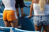 stock photo of groupies  - groupies at ball game wearing short shorts - JPG