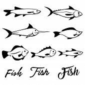 Fish Vector Illustration Icons Set. Fish Flat Line Style Vector Illustration. Fish Icons Isolated. T poster