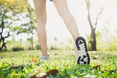 Close Up Of A Young Womans Legs In Warming Up The Body By Stretching Her Legs Before Morning Excerc poster