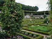 Garden At The Château De Villandry. Renaissance Gardens Include Ornamental Flower Gardens, And Veget poster