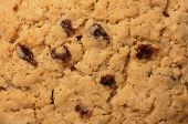 Texture And Pattern On Raisin Cookie/biscuit Surface, A Top View Close Up Photo Image On Cookie/bisc poster