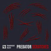 Animal Red Scratches On Dark Background. Claw Scratch Mark. Paper Claws Animal Scratching. Animal Pr poster