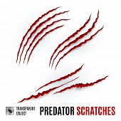 Animal Red Scratches On White Background. Claw Scratch Mark. Paper Claws Animal Scratching. Horror S poster