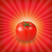 Sunburst Background With Red Tomato, Vector Illustration