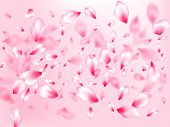 Pink Cherry Blossom Petals Isolated On Rose Color Background. Flying Sakura Flower Parts Spring Wedd poster