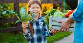 Children Little Girl Holding Mom Broccoli A Basket Of Fresh Organic Vegetables With Home Garden. Hea poster