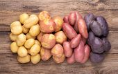 Heap of different types of potatoes on wooden rustic table poster