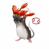 Cancer Creative Digital Illustration Of Astrological Sign. Rat Or Mouse Symboll Of 2020 Year Signs I poster