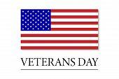 Veterans Day. 11 November. U.s.a Veterans Day Design poster