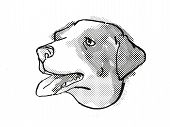 Retro Cartoon Style Drawing Of Head Of An Appenzeller Sennenhunde  , A Domestic Dog Or Canine Breed  poster
