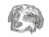 Retro Cartoon Style Drawing Of Head Of A Bernese Mountain Dog  , A Domestic Dog Or Canine Breed On I poster