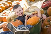 stock photo of riding-crop  - Two Little Boys Playing in Wheelbarrow at the Pumpkin Patch in a Rustic Country Setting - JPG