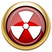 picture of radium  - Shiny glossy icon with white design on red and gold background - JPG
