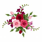 image of english rose  - Vector red and pink roses and freesia and green leaves on a white background - JPG