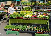 ESSLINGEN, GERMANY - APRIL 02,2014: Woman selling flowers at Market Square (Marktplatz) in Esslingen