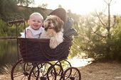 stock photo of baby dog  - Baby girl and puppy are sitting in a vintage pram - JPG