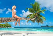 picture of tropical island  - Cute blonde woman sitting at palm tree on tropical beach Baie Lazare island Mahe Seychelles  - JPG
