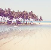 image of serenity  - Serenity tropical beach - JPG