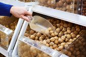 picture of shovel  - Walnuts on store shelves and hand the buyer with a shovel - JPG