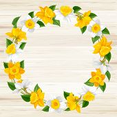 image of daffodils  - Retro round frame from daffodils flowers on wooden background - JPG