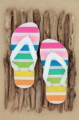 picture of driftwood  - Rainbow flip flop shoes on driftwood over beach sand background - JPG