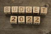 pic of reveillon  - Budget for 2022 wooden - JPG