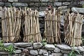 pic of firewood  - Close up of the heap of firewood on the backyard - JPG