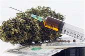 picture of seed bearing  - Syringe with brown liquid and hemp seeds and dried hemp leaves on dollar banknotes - JPG