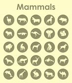 stock photo of aurochs  - It is a set of mammals simple web icons - JPG