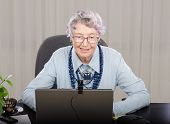 pic of teachers  - Glasses grey haired teacher looking at laptop screen - JPG