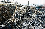 image of scrap-iron  - large pile of waste metal scrap in the big steel tank - JPG