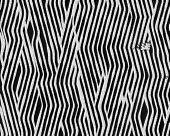 Zebra Fingerprint Short Fur poster