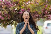 Woman Sneezing Because Of Spring Pollen Allergy poster