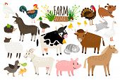 Farm Animals. Domestic Farm Animal Collection Isolated On White Background, Goose And Donkey, Pig An poster