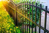 Iron Fence, Black Iron Fence, Metal Fence poster
