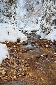 Rocks In A Stream In Winter, With Puffy White Snow All Around, In Piatra Mare Mountains, Brasov Coun poster