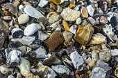 Abstract Background With Decorative Floor Pattern Of Gravel Stones, Gravel Texture. Closeup poster
